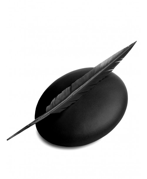 Feather Black Beret