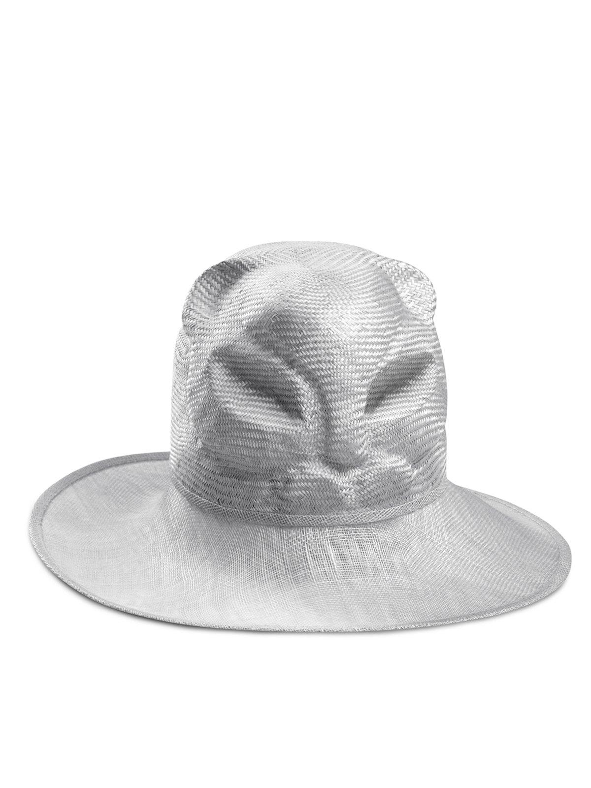 Cat ScottishFold Hat
