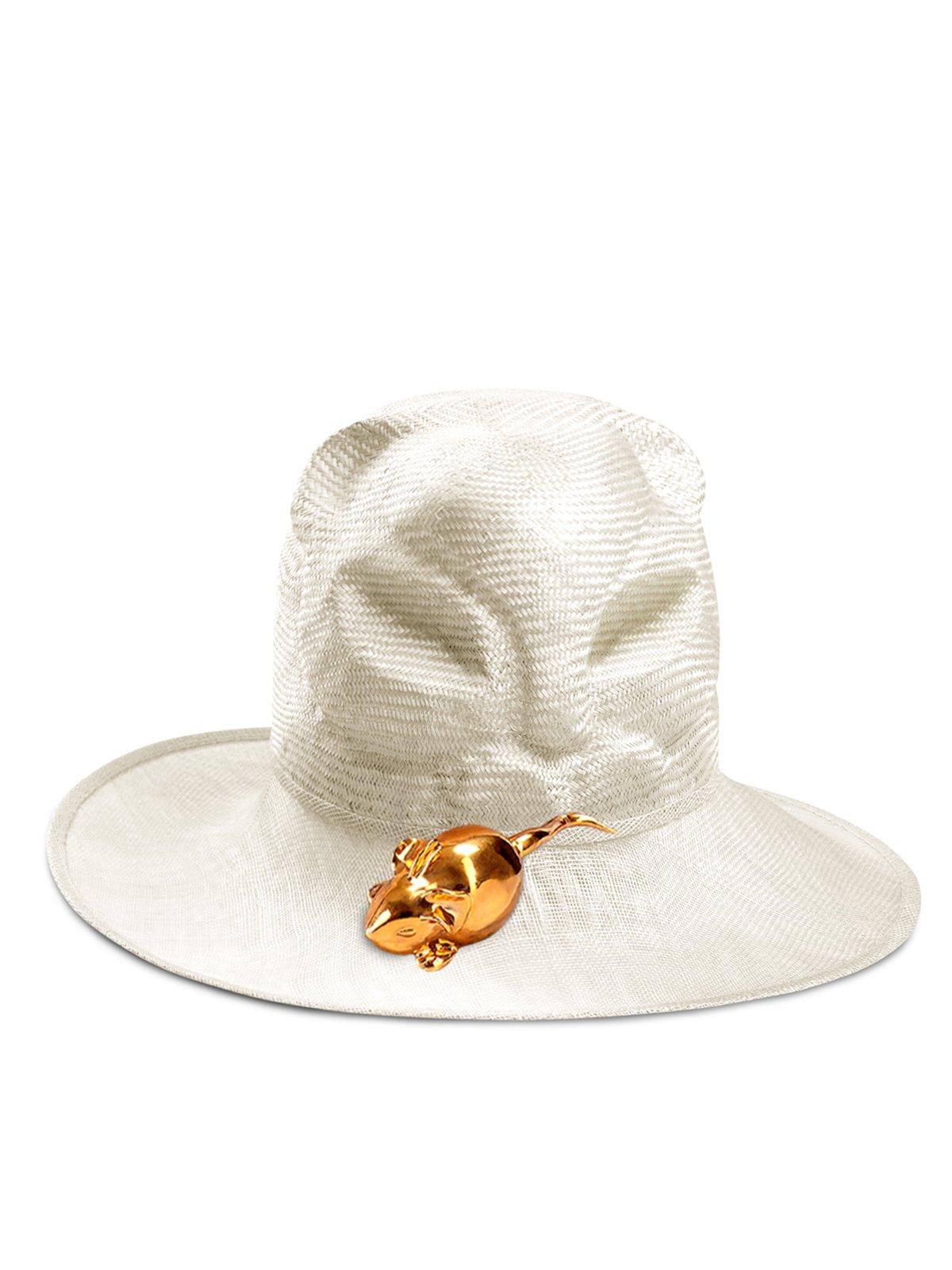 Cat Van Hat