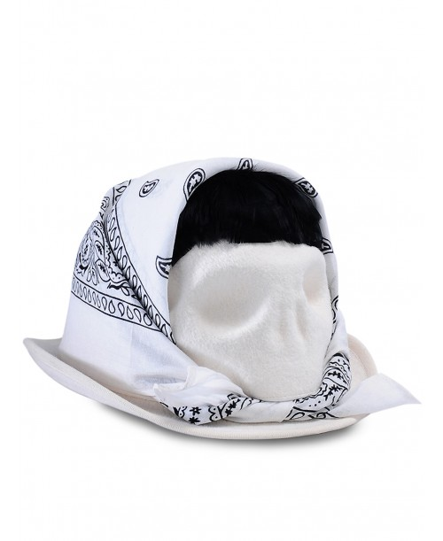 Skull With White Bandana